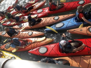 Kayaks on Chicago River.