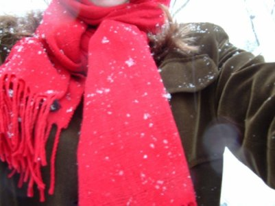 Snowflakes on a red scarf.