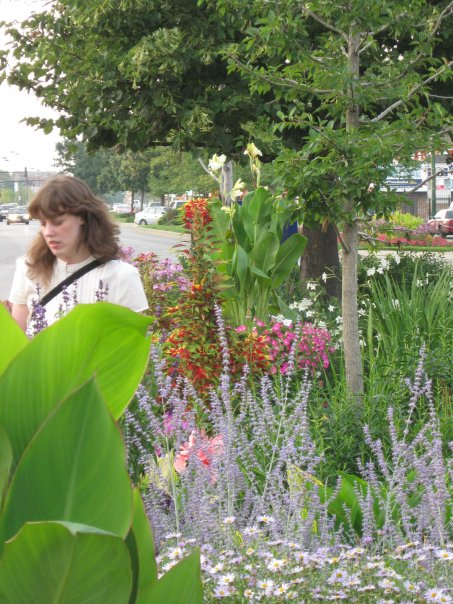 Street garden in Andersonville.