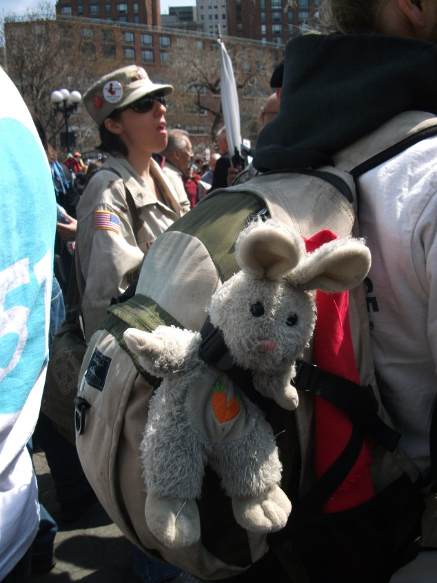 Bunny on backpack. New York City.